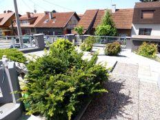 Maksimir,6soban stan s vrtom,terasama,bazenom i 2 garaže