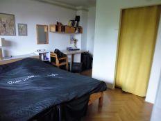 Vrapče, uređena kuća s 2 odvojena stana,vrtom,garažom,p.mj.